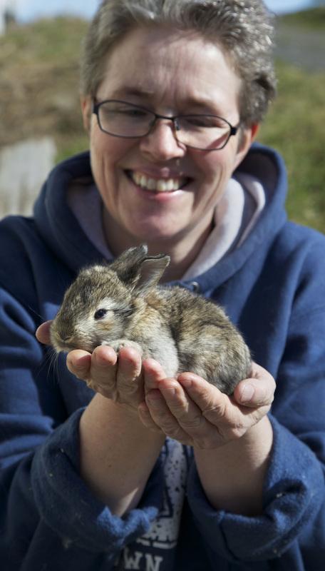 Vidgirs and a baby angora rabbit.